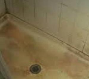 dirty shower stall